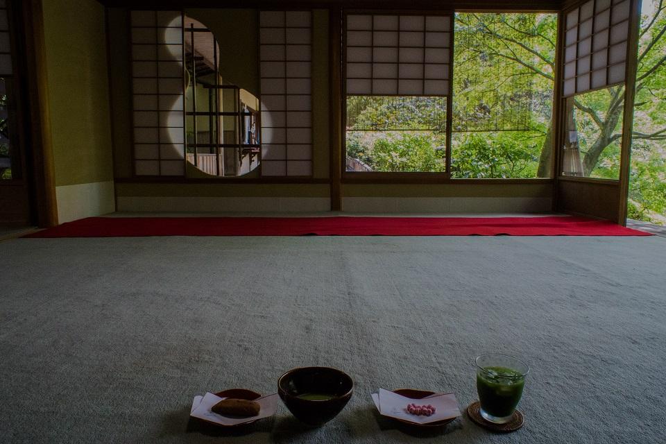 退蔵院の季節の花と青もみじ_e0363038_8365699.jpg
