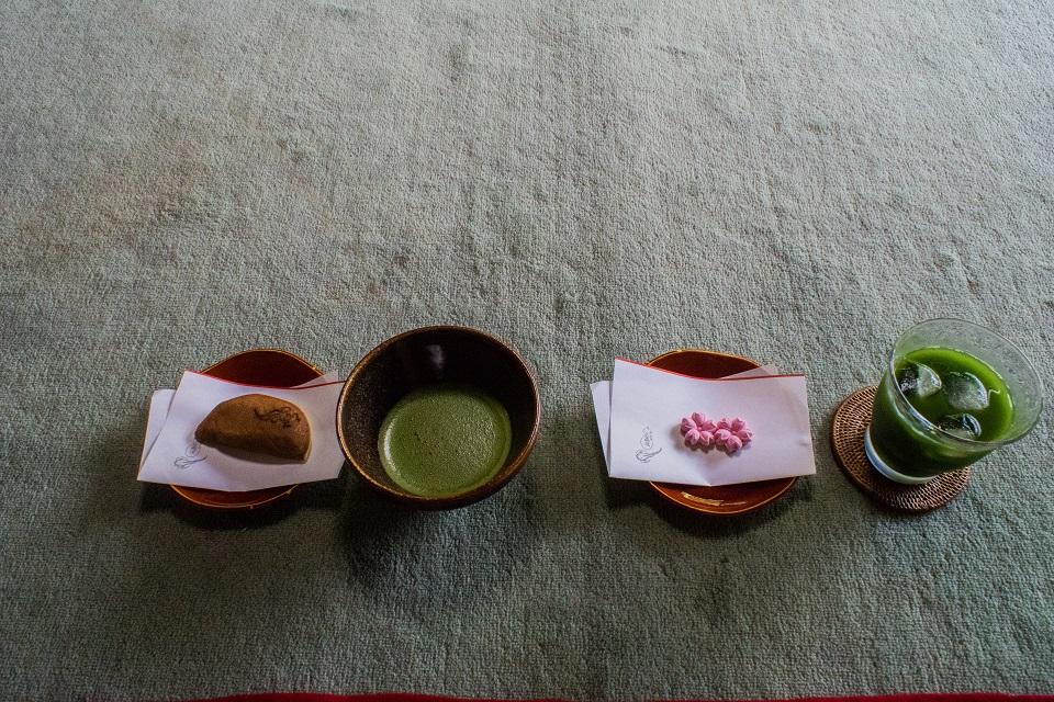 退蔵院の季節の花と青もみじ_e0363038_837047.jpg