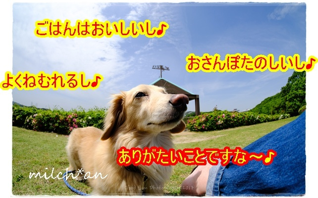 b0115642_22012027.jpg
