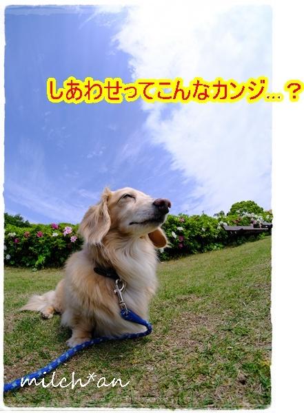 b0115642_22012541.jpg