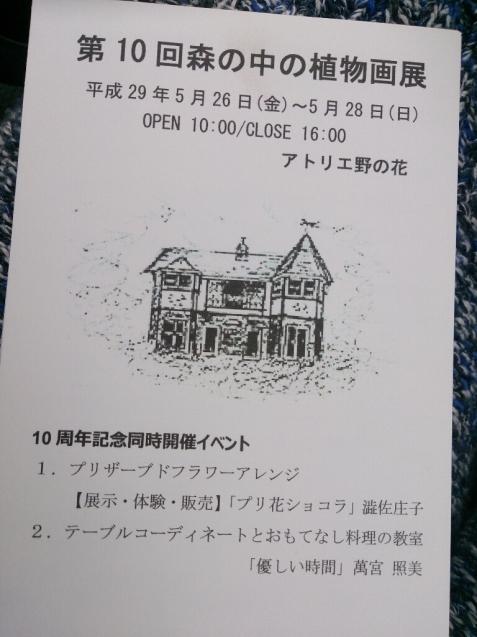 守谷 青山邸「森の中の植物画展」のお知らせ_f0323446_23300743.jpg