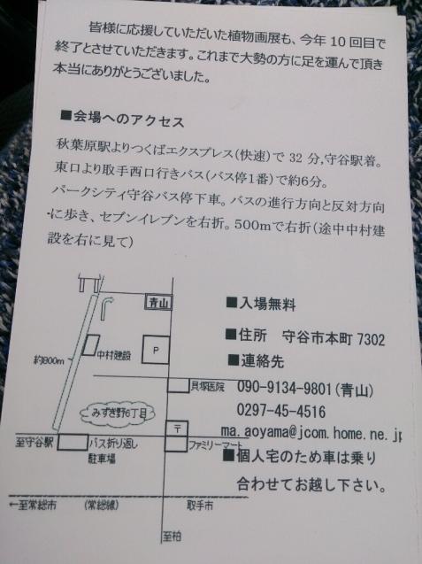 守谷 青山邸「森の中の植物画展」のお知らせ_f0323446_23300935.jpg