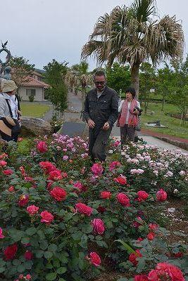 絵美さんが撮した薔薇ツアー・・・2017年5月16日の記録・・_b0137969_05585695.jpg