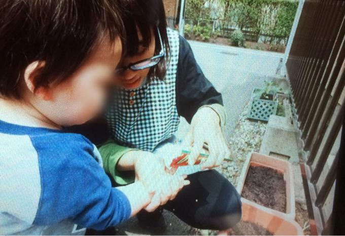 くまクラス  野菜の種を植えました♪_c0293682_18061259.jpg