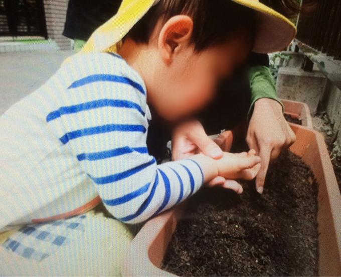 くまクラス  野菜の種を植えました♪_c0293682_18061464.jpg
