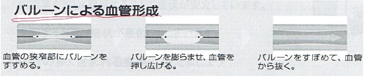 d0249595_17443724.jpg