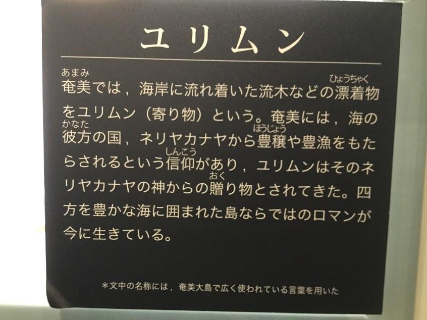 ☆奄美大島 雨の日☆_d0035397_15202287.jpg