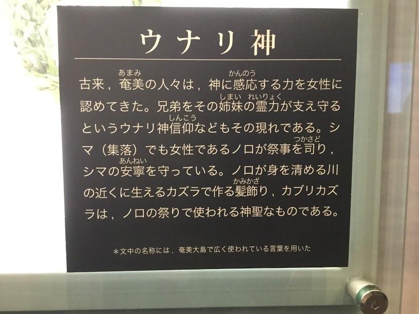 ☆奄美大島 雨の日☆_d0035397_15212180.jpg