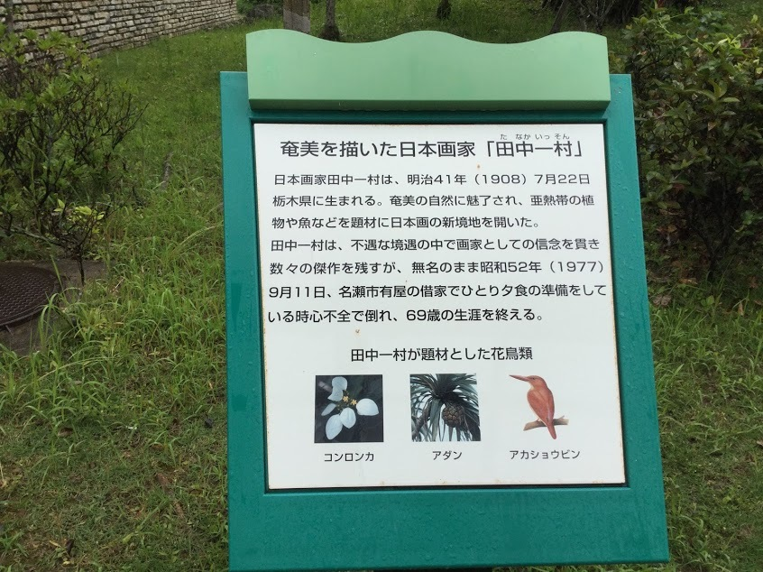 ☆奄美大島 雨の日☆_d0035397_15231424.jpg