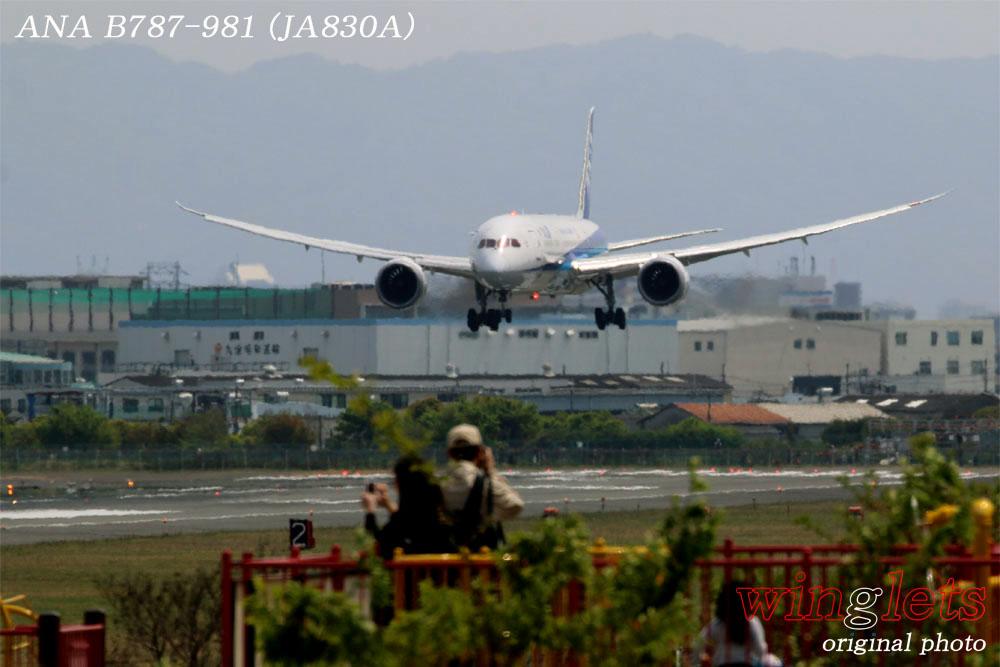 '17年 伊丹空港(RJOO)レポート ・・・ ANA/JA830A_f0352866_21551856.jpg