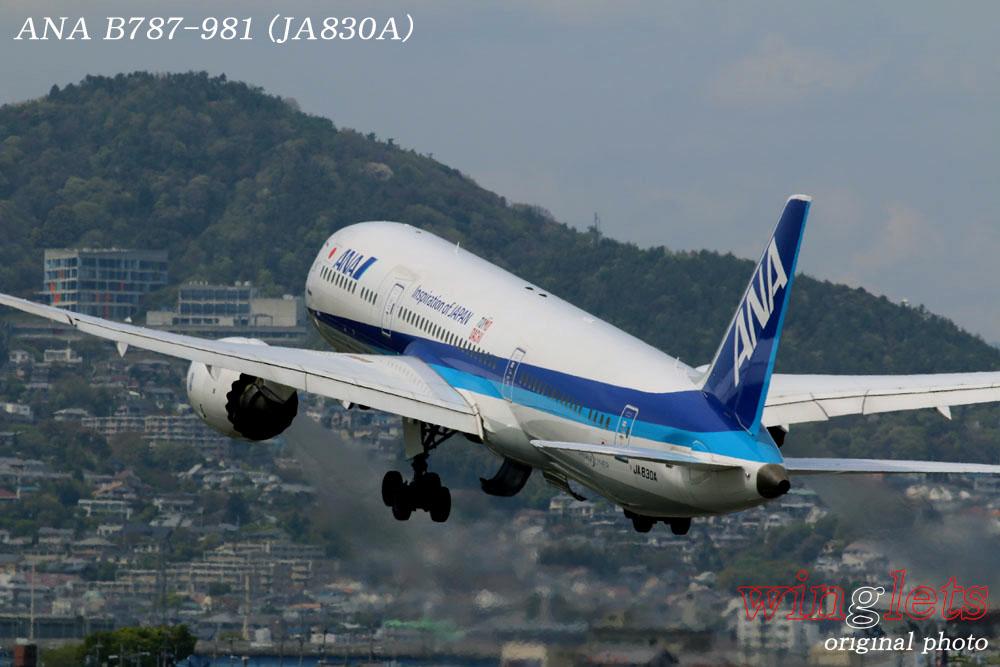 '17年 伊丹空港(RJOO)レポート ・・・ ANA/JA830A_f0352866_21555449.jpg