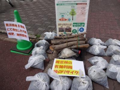 富浜緑地にて、イベント交流広場を開催します!_d0338682_11453181.jpg