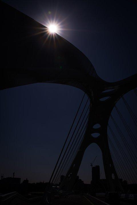 新緑の季節の白い橋_d0353489_2144794.jpg