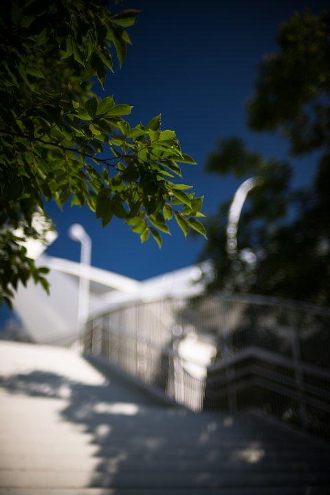 新緑の季節の白い橋_d0353489_2152568.jpg