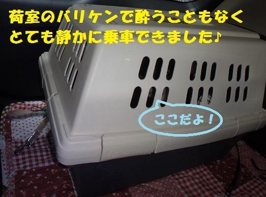 f0121712_00004186.jpg
