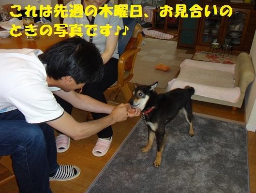 f0121712_10541280.jpg