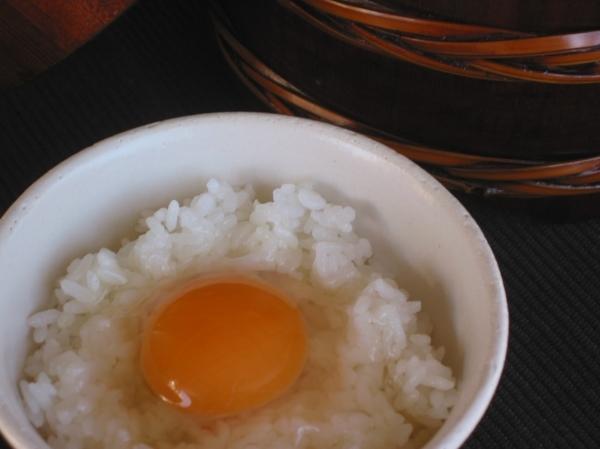 「モノカタリ食堂 ②(放し飼い自然卵)」_a0120513_19132026.jpg
