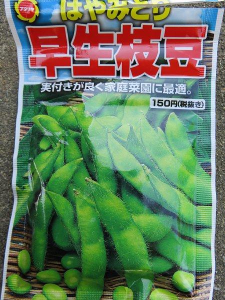 2017年5月22日 枝豆の種を蒔きました !_b0341140_20445241.jpg