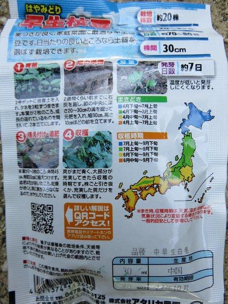 2017年5月22日 枝豆の種を蒔きました !_b0341140_204536.jpg
