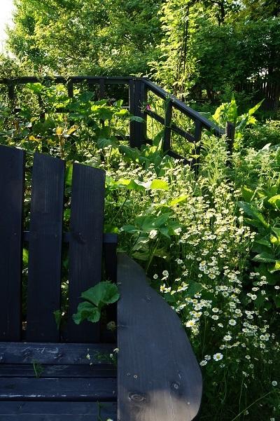 ガーデンマルシェ、一日目終了♪_e0254750_21213894.jpg