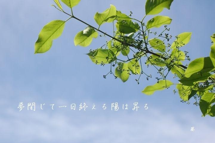 f0379160_09032506.jpg
