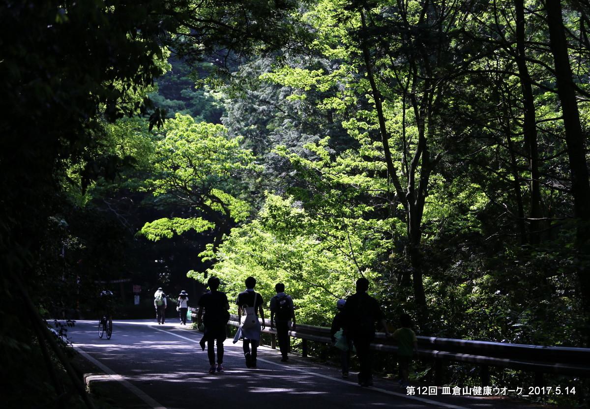 第12回 皿倉山健康ウオーク_b0220064_06271239.jpg