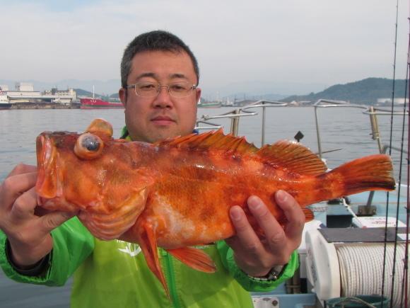 23日・火・良い感じでオッチャン頑張っています(^▽^) - 愛媛・松山・伊予灘・高速遊漁船 pilarⅢ 海人 本日の釣果
