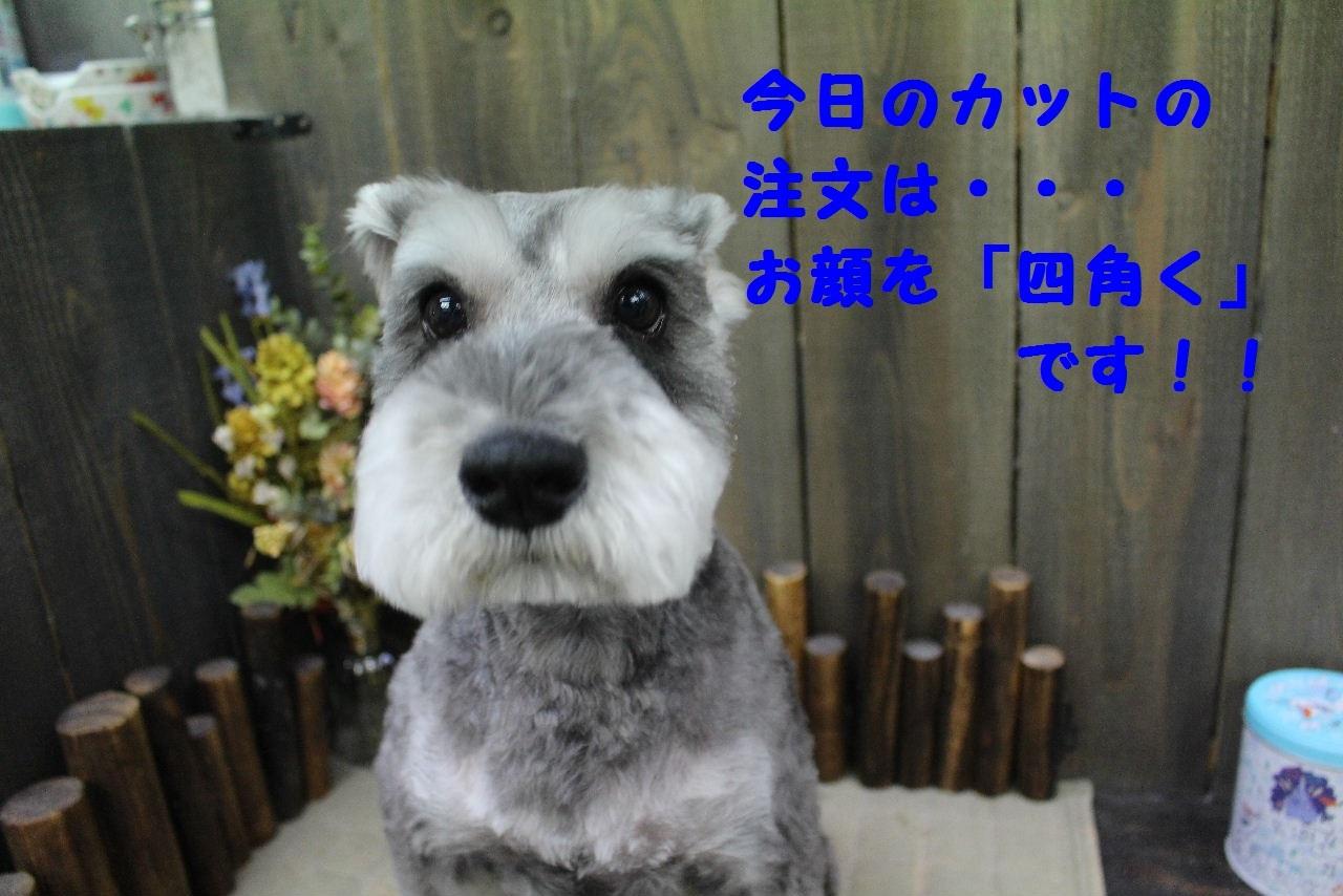 おはよぉ~ございます!!_b0130018_07345483.jpg