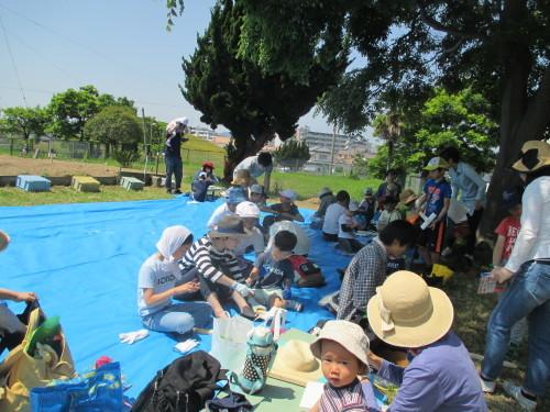 五色塚おやこ楽農くらぶ 29年度開校です!!_f0079749_06145987.jpg