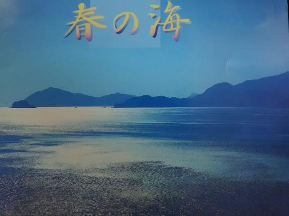 春の海のこと_b0299052_11520554.jpg
