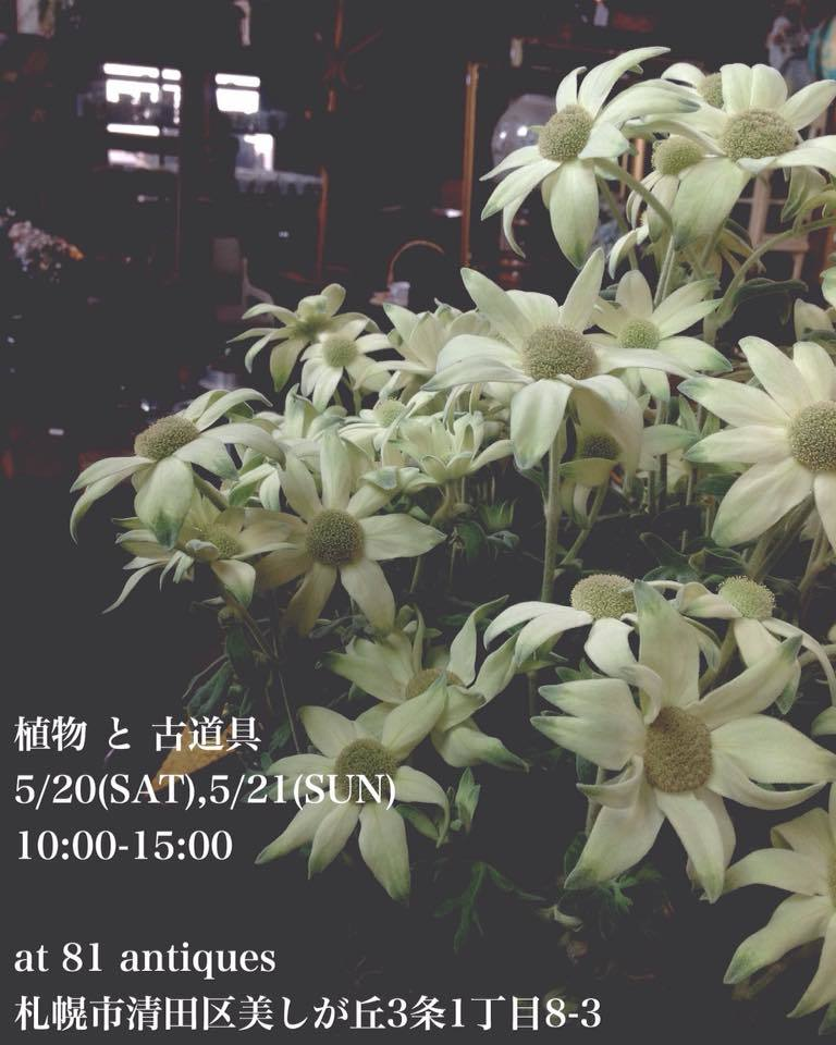 a0183790_09180590.jpg
