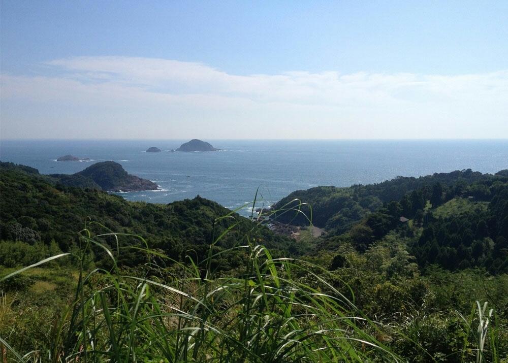 農業試験場(熊野農園 牧山地区)_a0300410_23304763.jpg