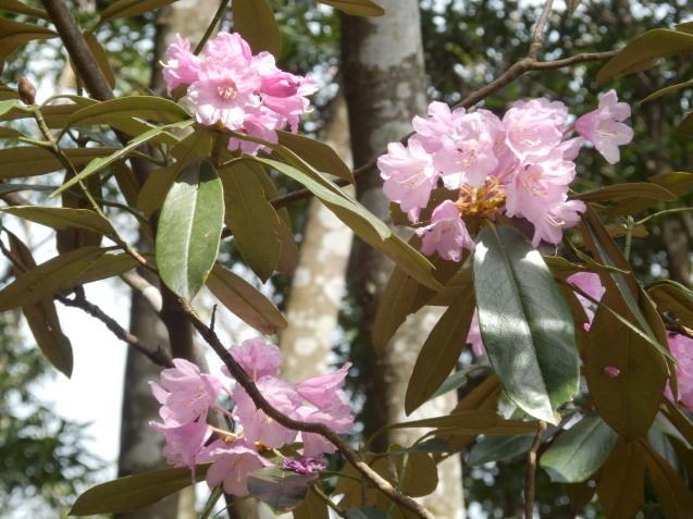 f0219710_14000300.jpg