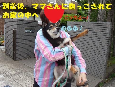 f0121712_14501841.jpg