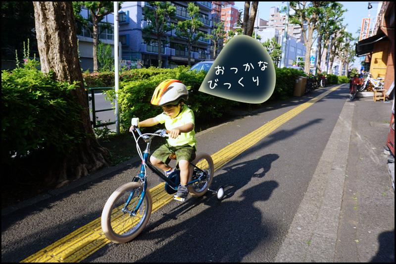 b0019313_13573681.jpg