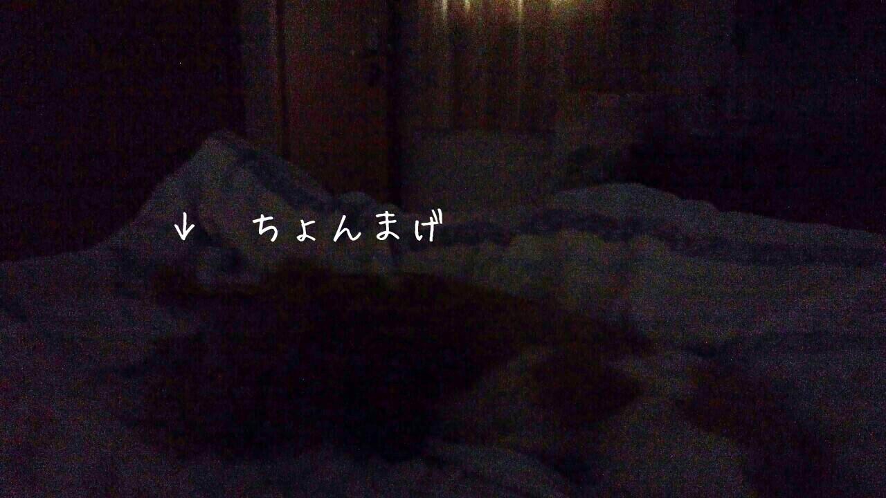 b0306158_15435280.jpg