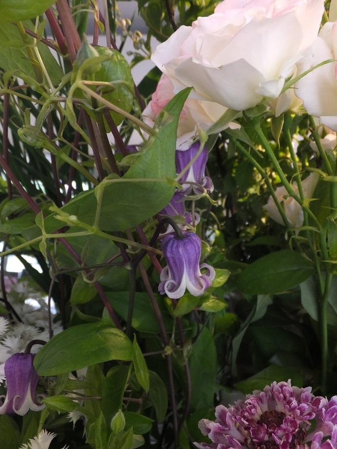 オークリーフ(おすすめの花クレマチス)_f0049672_15332329.jpg