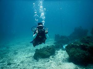 海洋実習です_f0144385_18044322.jpg