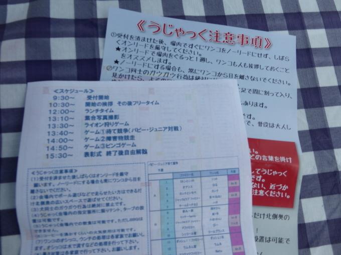 b0321595_17395002.jpg
