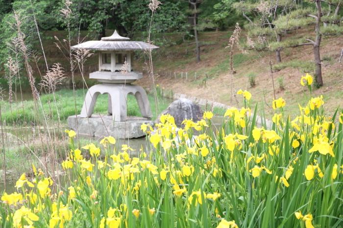 大阪 緑地公園_c0100195_09433077.jpg