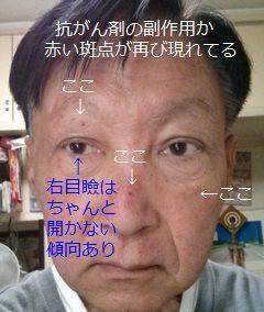 d0051601_08383255.jpg