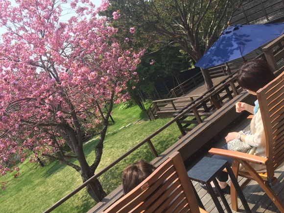 5月23日 火曜日の本店はオールスターブログ★ 夏休みに向けて!キャンピングカー有ります!TOMMY_b0127002_17213117.jpg