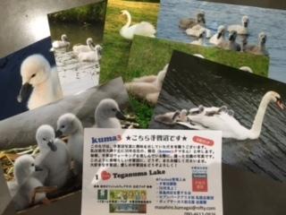 手賀沼親水広場「水の館」へ_f0243509_13102055.jpg