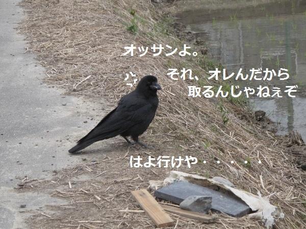 f0143123_09583673.jpg