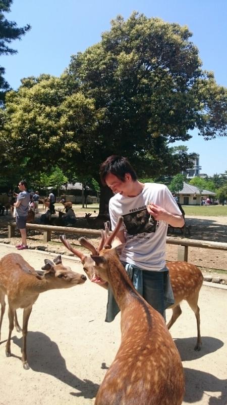 大仏と鹿と私。_f0225623_08462681.jpg