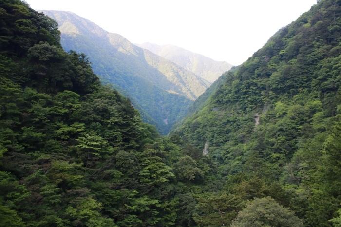 【寸又峡/夢の吊り橋】- 2 -_f0348831_20495497.jpg