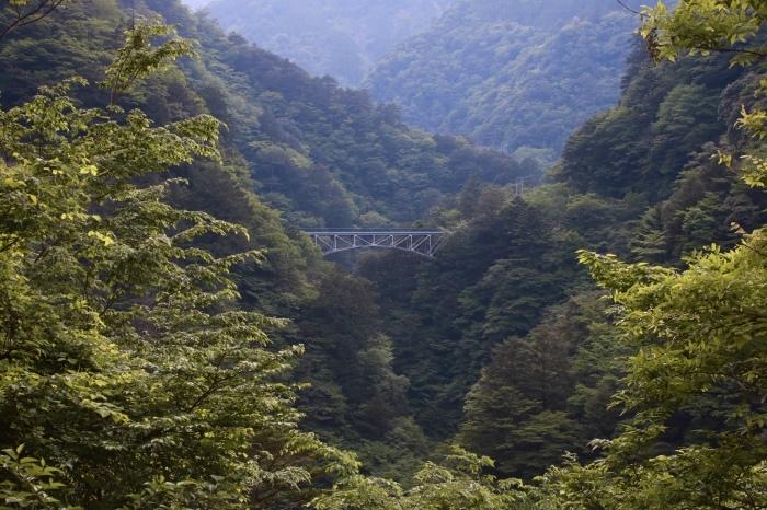 【寸又峡/夢の吊り橋】- 2 -_f0348831_20501471.jpg