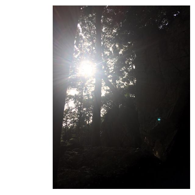 偶発的浜名湖周遊miraclemysteryツアー(笑)_f0223361_08050574.jpg