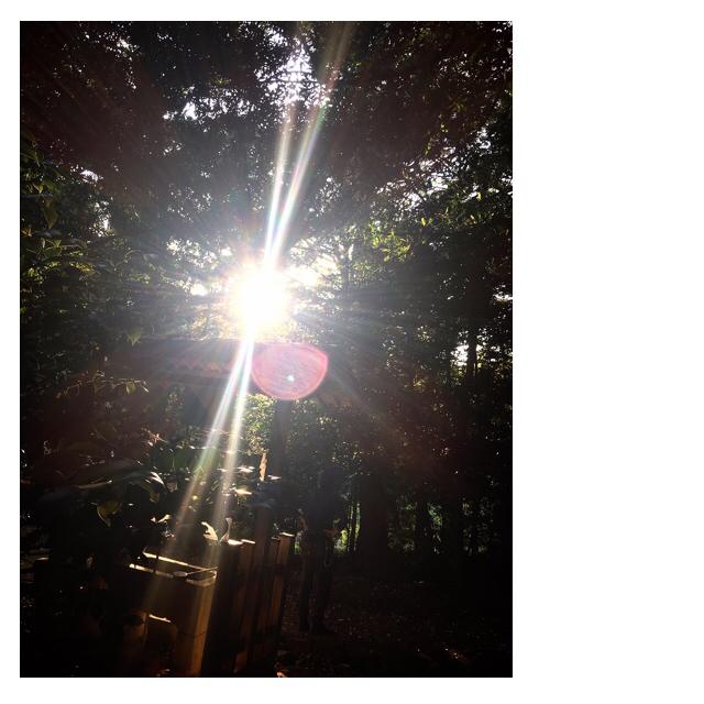 偶発的浜名湖周遊miraclemysteryツアー(笑)_f0223361_08050679.jpg