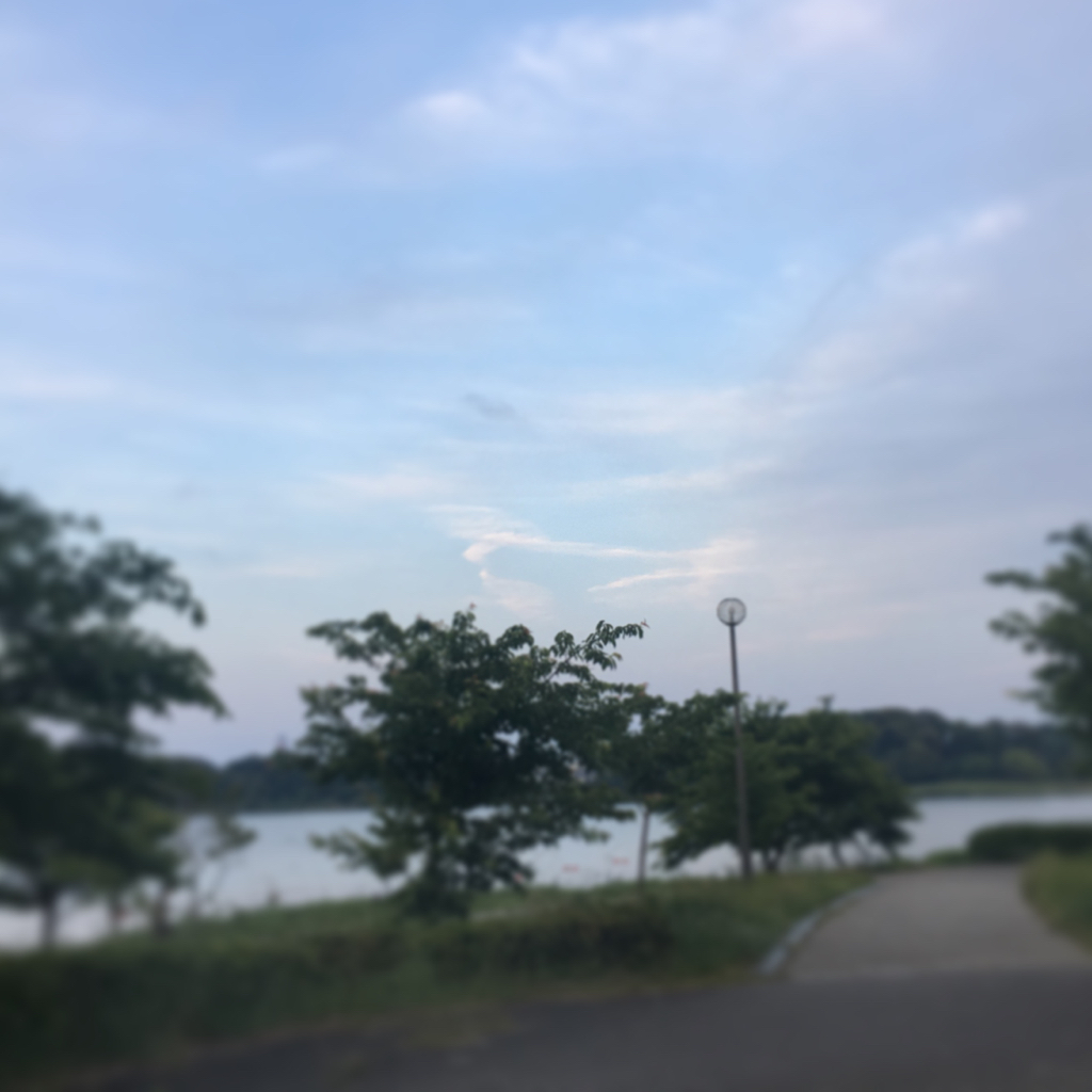 偶発的浜名湖周遊miraclemysteryツアー(笑)_f0223361_08050755.jpg